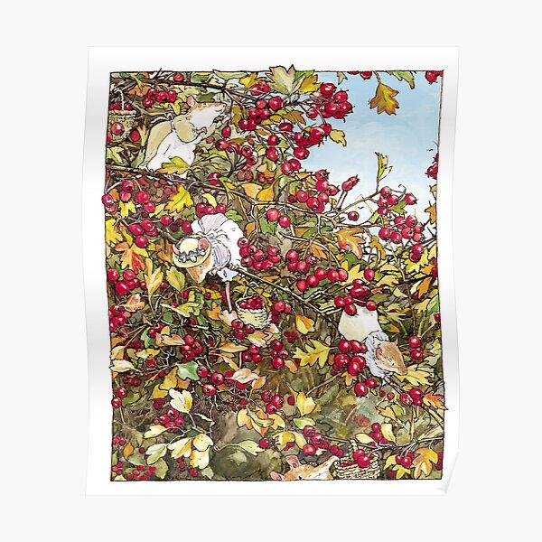 The Blackthorn Bush Poster
