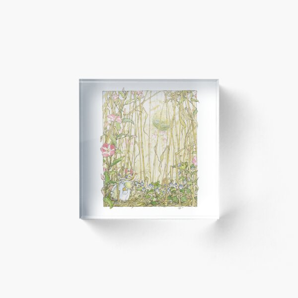 Primrose gathering flowers Acrylic Block