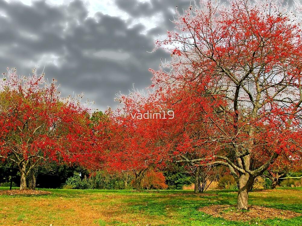 Berry Trees by vadim19