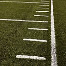 Down the Sideline - Stating Inbounds by Buckwhite