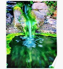 Stone fountain and moss Poster
