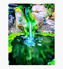 Stone fountain and moss Photographic Print
