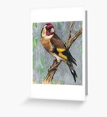 Bird 1 - European Goldfinch Greeting Card
