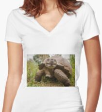 Galapagos Giant Tortoise Women's Fitted V-Neck T-Shirt