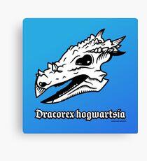 Dracorex hogwartsia skull! Canvas Print