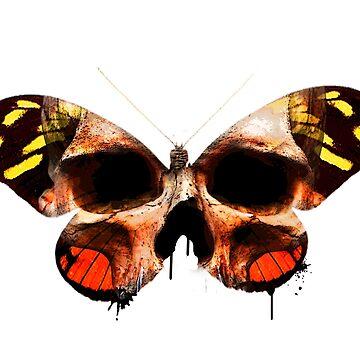 Fantasy skull butterfly by diana2266