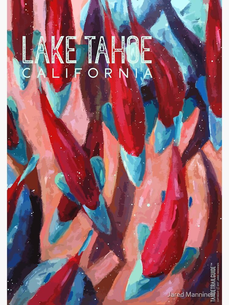 Kokanee Salmon Run (Lake Tahoe, CA) by JaredManninen