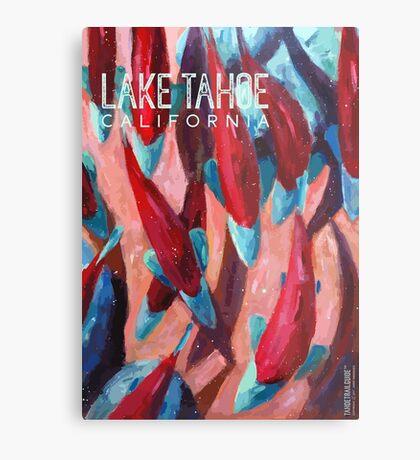 Kokanee Salmon Run (Lake Tahoe, CA) Metal Print