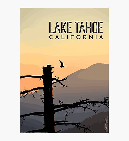 Osprey Takes Flight at Sunrise (Lake Tahoe, CA) Photographic Print