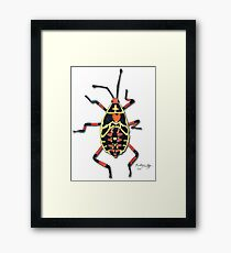 Colorful Insect Framed Print