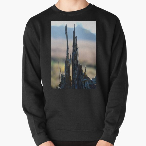 Pointing to the Sky, Tree stump Detail. Pullover Sweatshirt