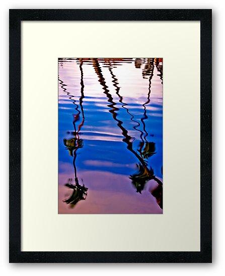Wavey Palms by photosbyflood