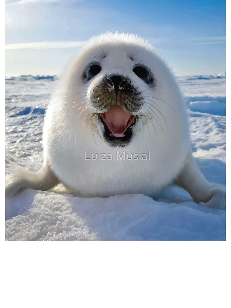 seal,baby seal by Luiza Musial