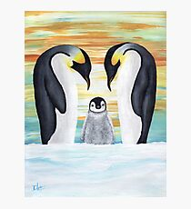 Penguin Family with Baby Penguin Photographic Print