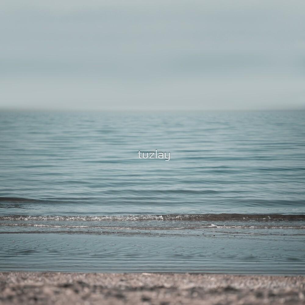 Azov Sea beach #3 by tuzlay