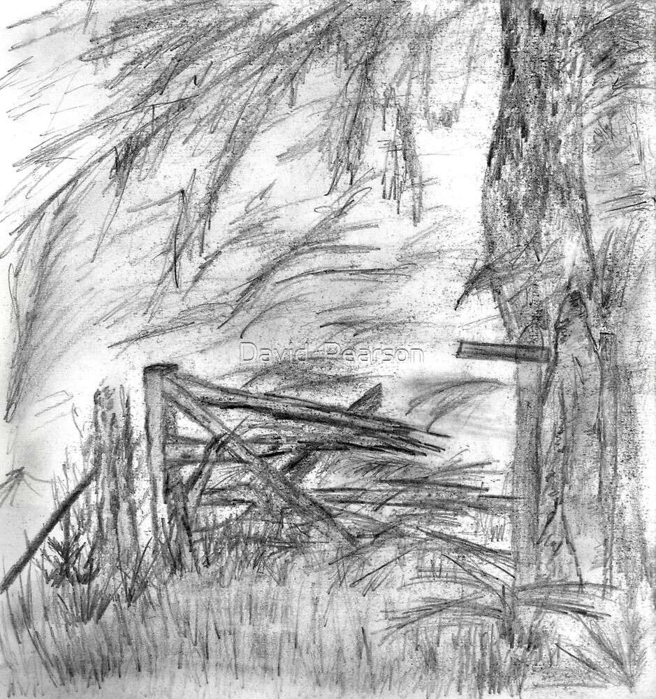 Gate In The Woods by David  Pearson