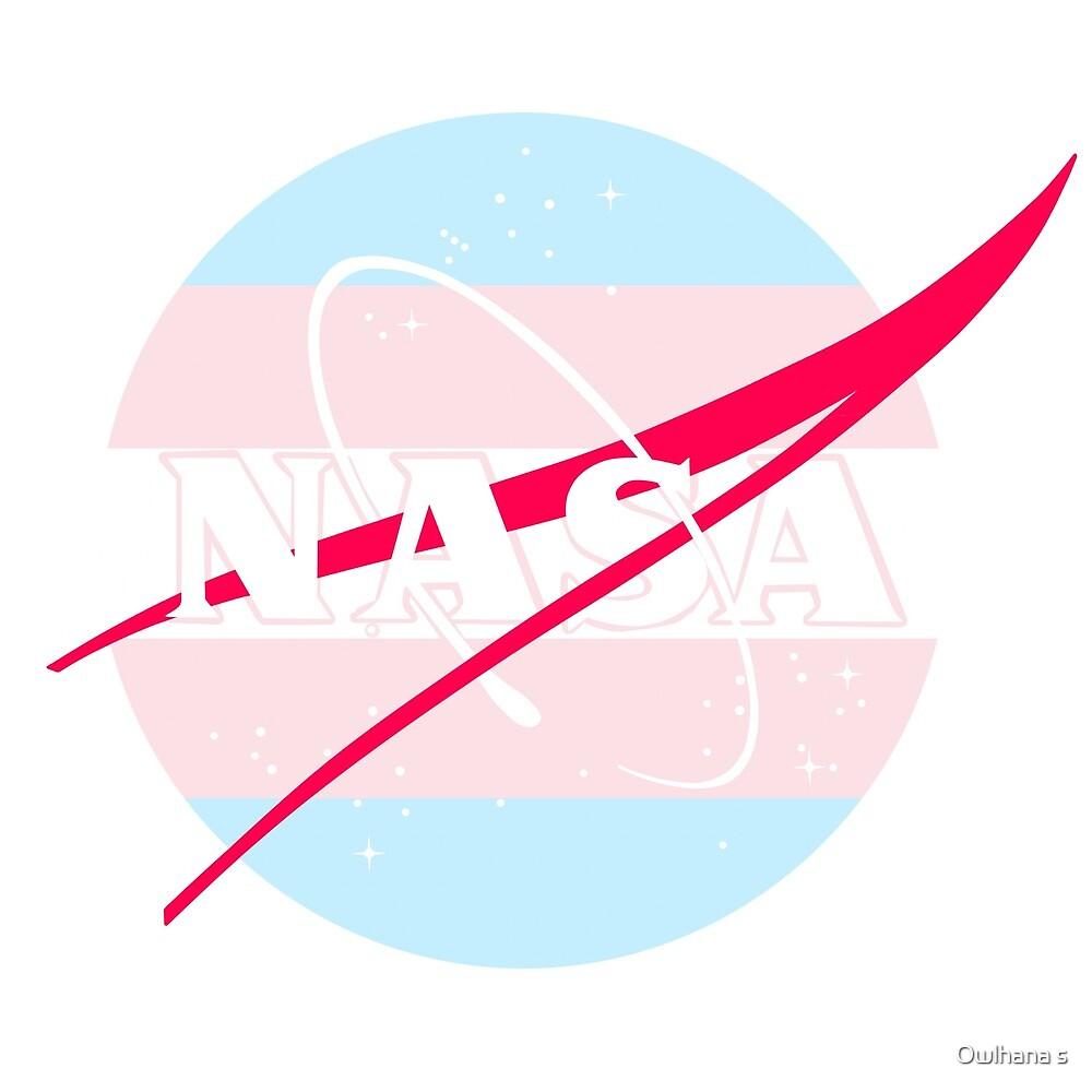 Pastel NASA Logo - Trans by Hijinata