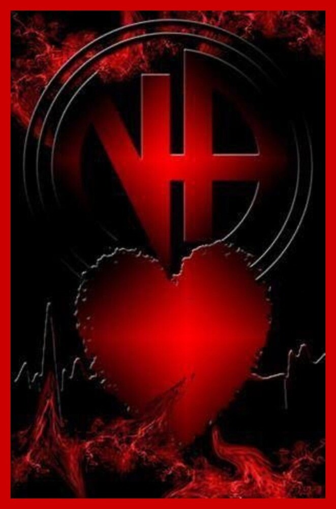 Narcotics Anonymous ~ Love in the Fellowship by Nancy Jewell