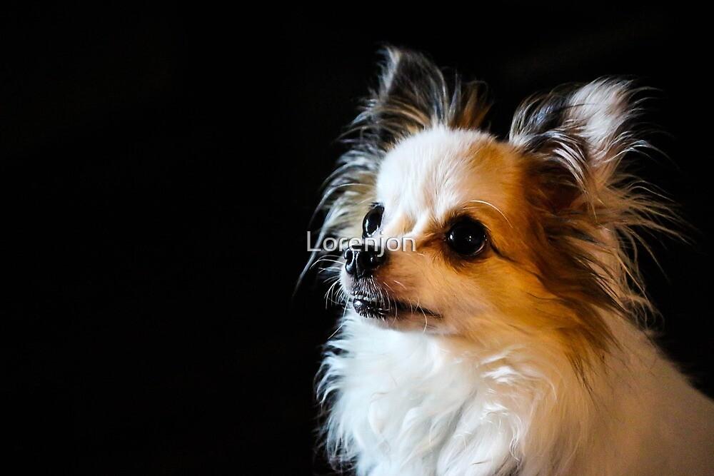 Best Friend by Loren Jon Photographer