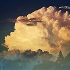 Thunderhead on a Misty Morn by Cloudlingpics