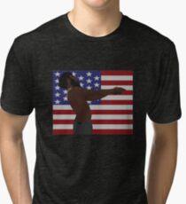 Childish Gambino - This Is America (Full Flag) Tri-blend T-Shirt