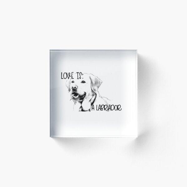 Love Is A Labrador Retriever Acrylic Block