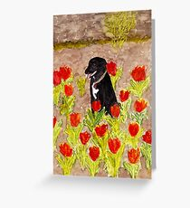 Black Dog in Red Tulips Greeting Card