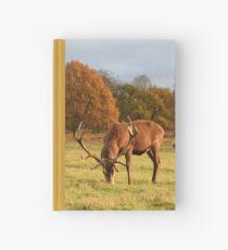 Deer in Richmond Park Hardcover Journal
