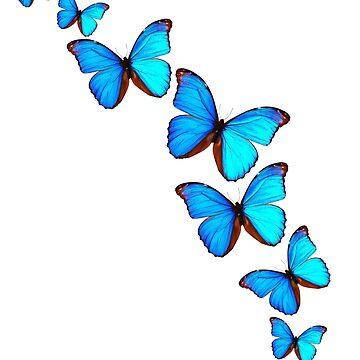 A Kaleidoscope of Butterflies by MAMMAJAMMA