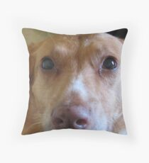 The Eyes of Maisey Moo Throw Pillow