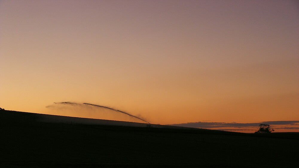 sunset magic over irrigated paddocks  by gaylene