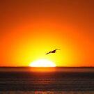 Goodbye Bright Sun till Tomorrow by Jo Nijenhuis
