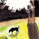 Black dog in morning light by danvera