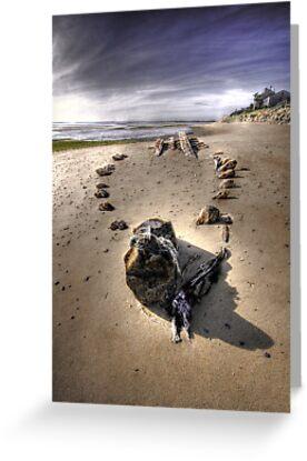 The Hammer Shipwreck Cape Cod HDR by Artist Dapixara