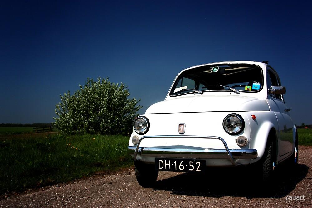 Fiat 500 L by rayart