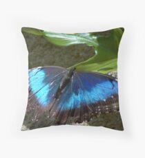 Blue Morph Butterfly Throw Pillow