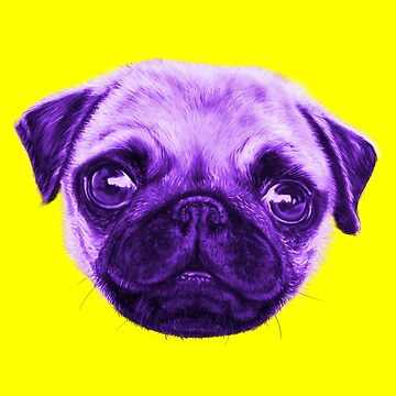 Sunday Pop Art Pug Violet And Yellow by brodyquixote