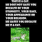 This is a Cat... by blackcatloner