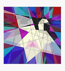 Paper Swan Photographic Print