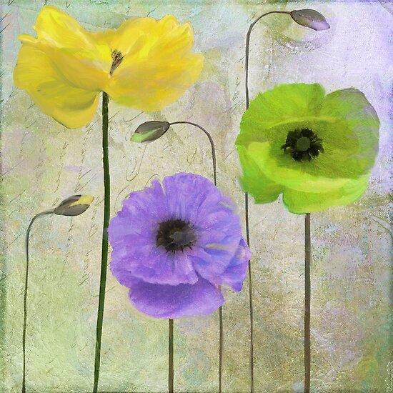 Poppy Shimmer II by mindydidit