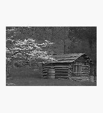 Farmstead 01 Photographic Print