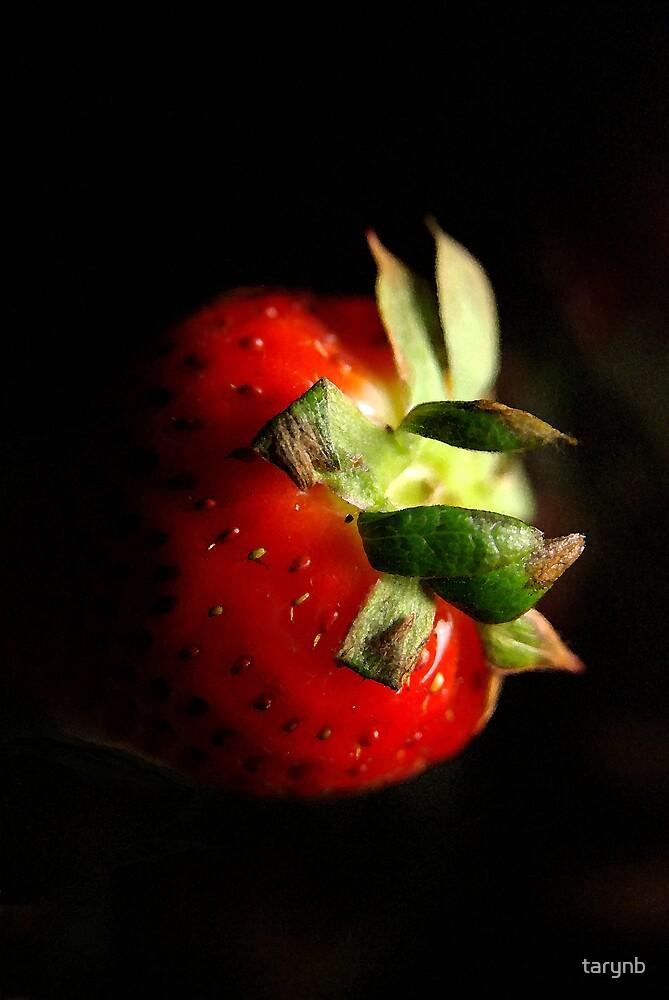 Strawberry by tarynb