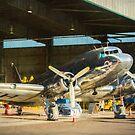 Douglas DC3 in the Hangar by Stuart Row