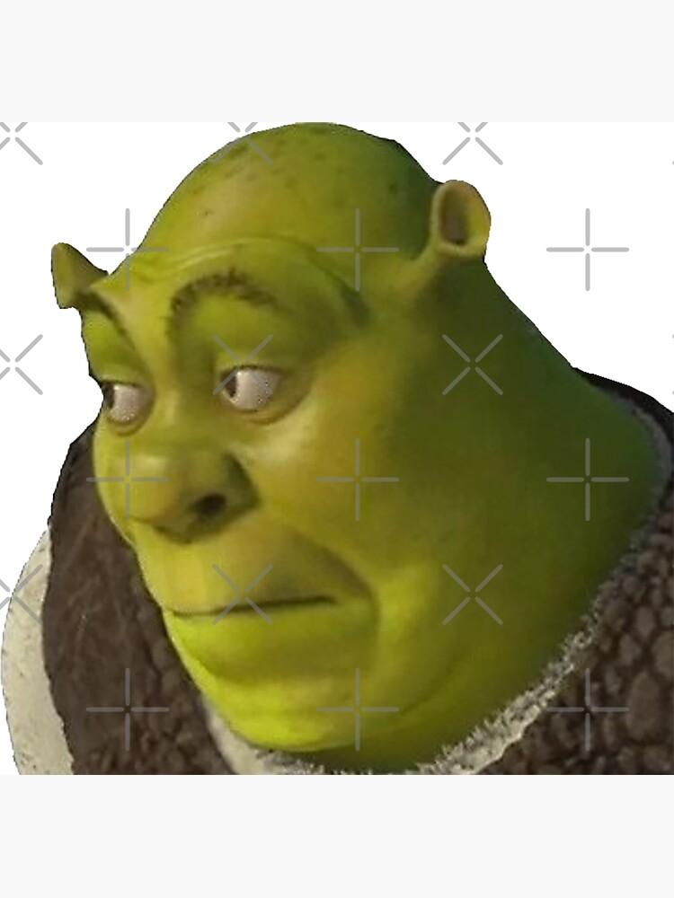Shrek  by VampireVenom