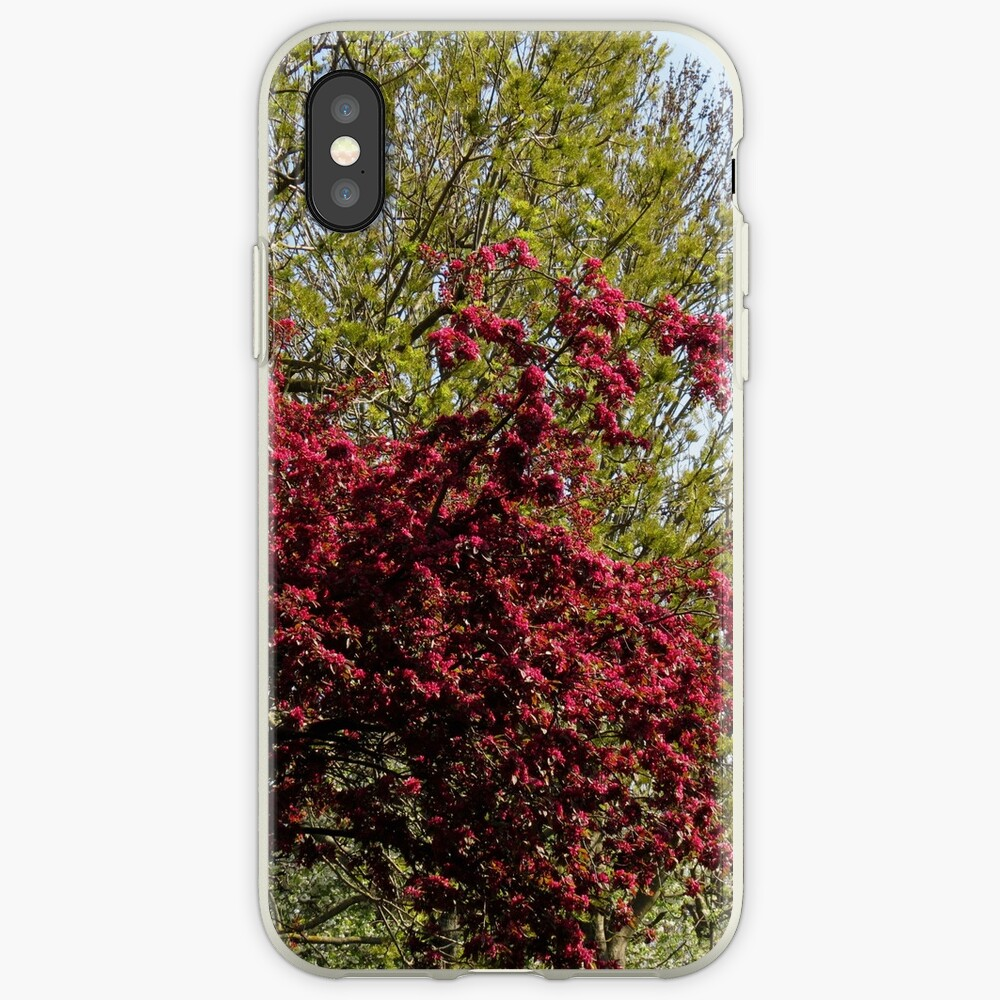 Baum mit roten Blüten iPhone-Hülle & Cover