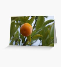 Fresh Greeting Card