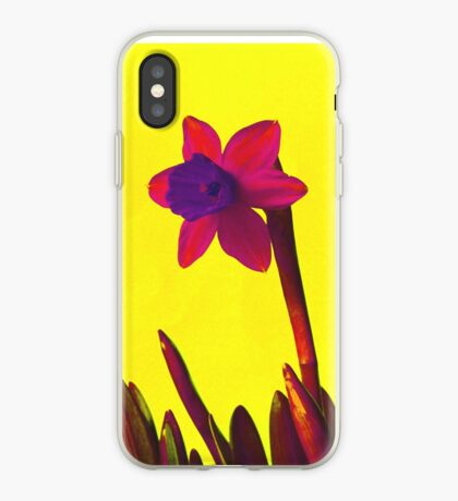 Daffodil Pink with Orange iPhone Case