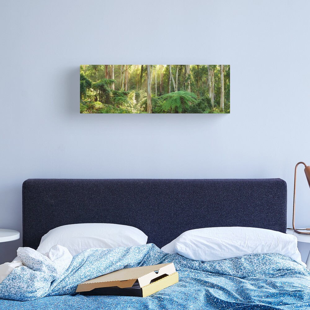 Dawn Lights The Dandenongs, Australia Canvas Print