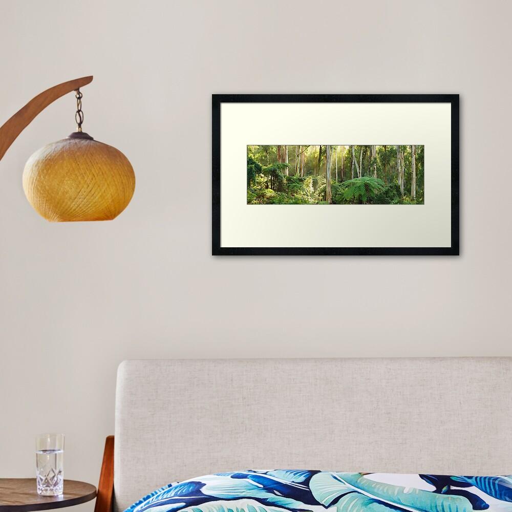 Dawn Lights The Dandenongs, Australia Framed Art Print