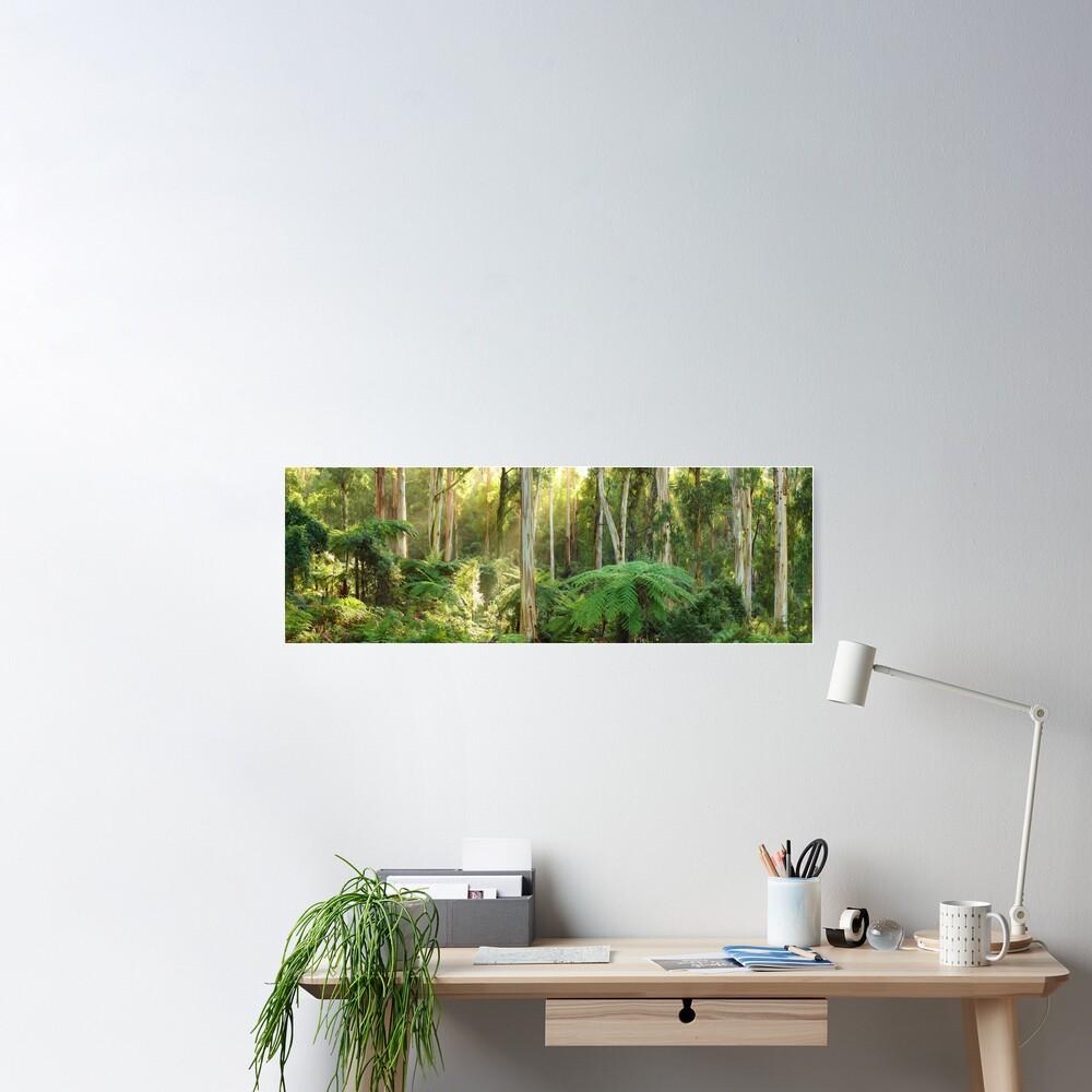 Dawn Lights The Dandenongs, Australia Poster